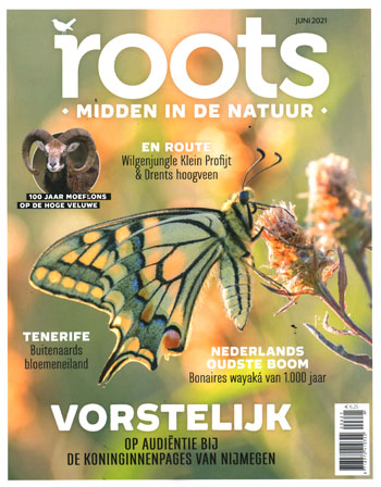 Roots 06-2021