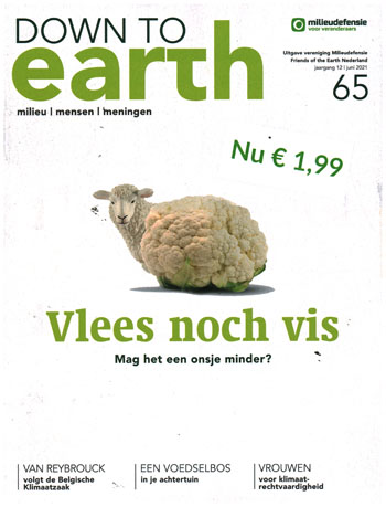 Down to earth 65-2021